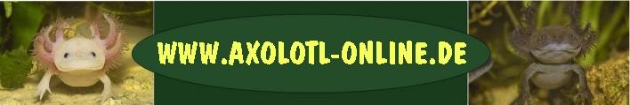 Axolotlonline_Logo_HP_klein angep.