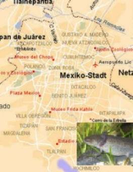 Landkarte_Mexiko_Stadt
